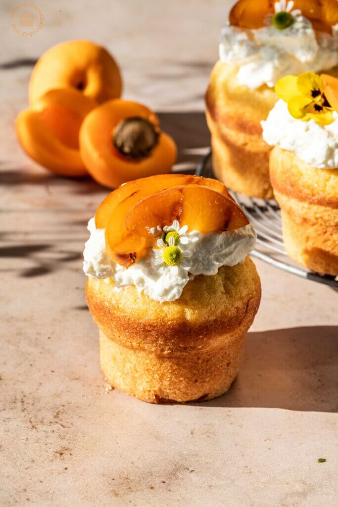 apricots and honey cakelets | lilcupcakemonkey.com